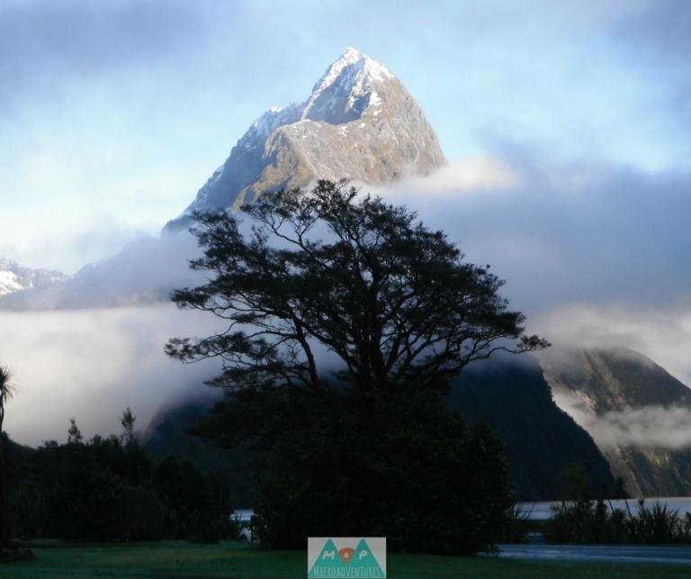 MaP_New Zealand_10