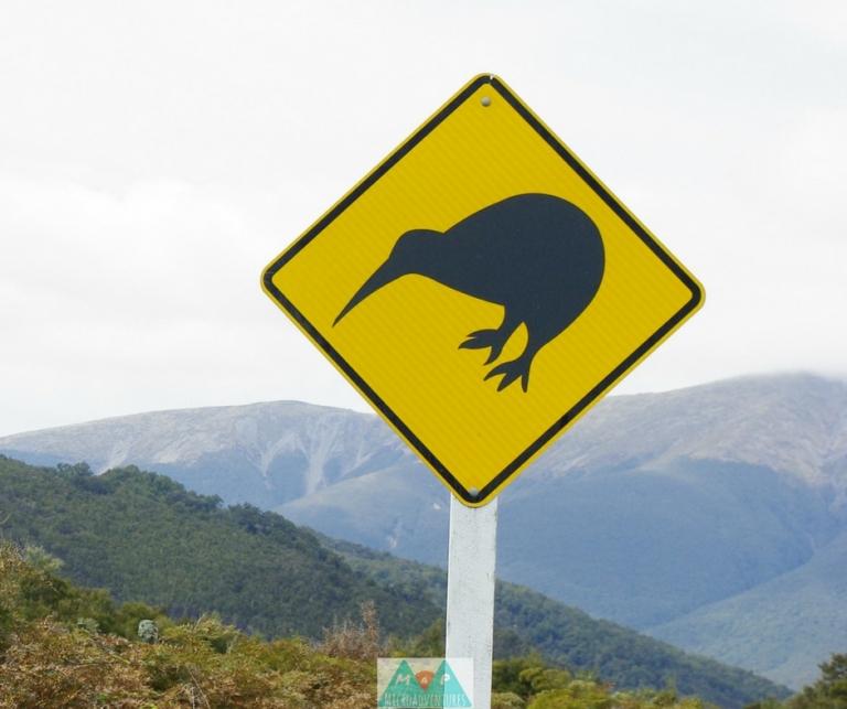 MaP_New Zealand_9