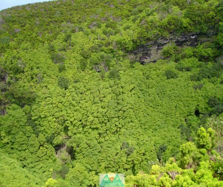 MaP_Açores_10