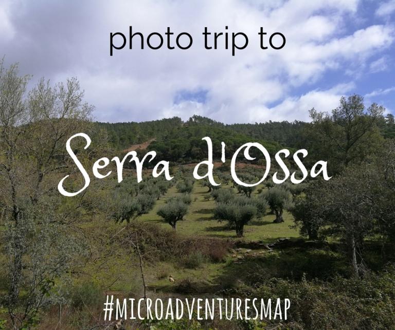 MaP_Serra d'Ossa_1