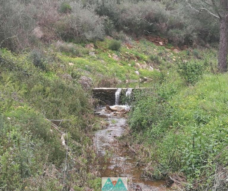 MaP_Serra d'Ossa_10