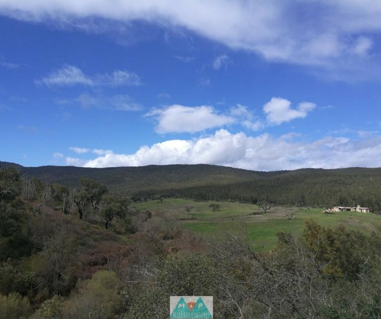 MaP_Serra d'Ossa_9