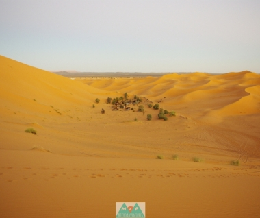 MaP_Arabian Nights_11